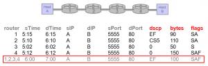 Bidirectional NetFlow Support