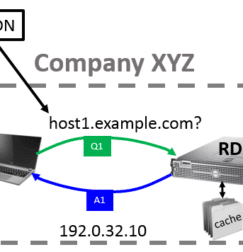 DNS Process Overview