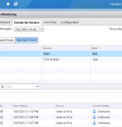 VMware's NSX Flow Monitoring Interface