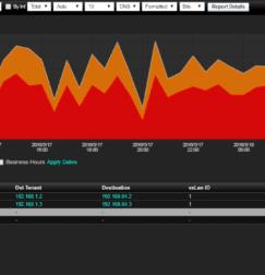 VMware NSX IPFIX Exports