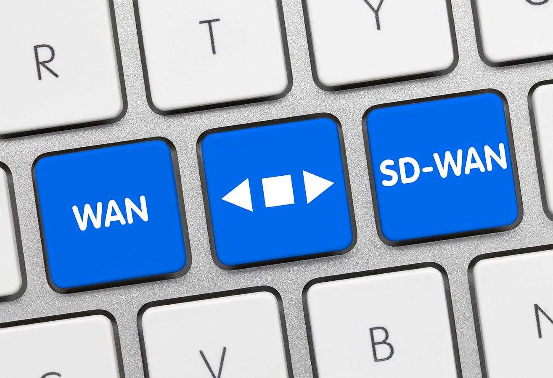 Monitoring SD-WAN Traffic